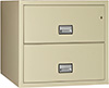 Phoenix Lateral 2-Drawer Fireproof File Cabinet