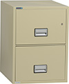 Phoenix Vertical 2-Drawer Legal Fireproof File