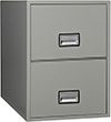 Phoenix Vertical 2-Drawer Letter Fireproof File